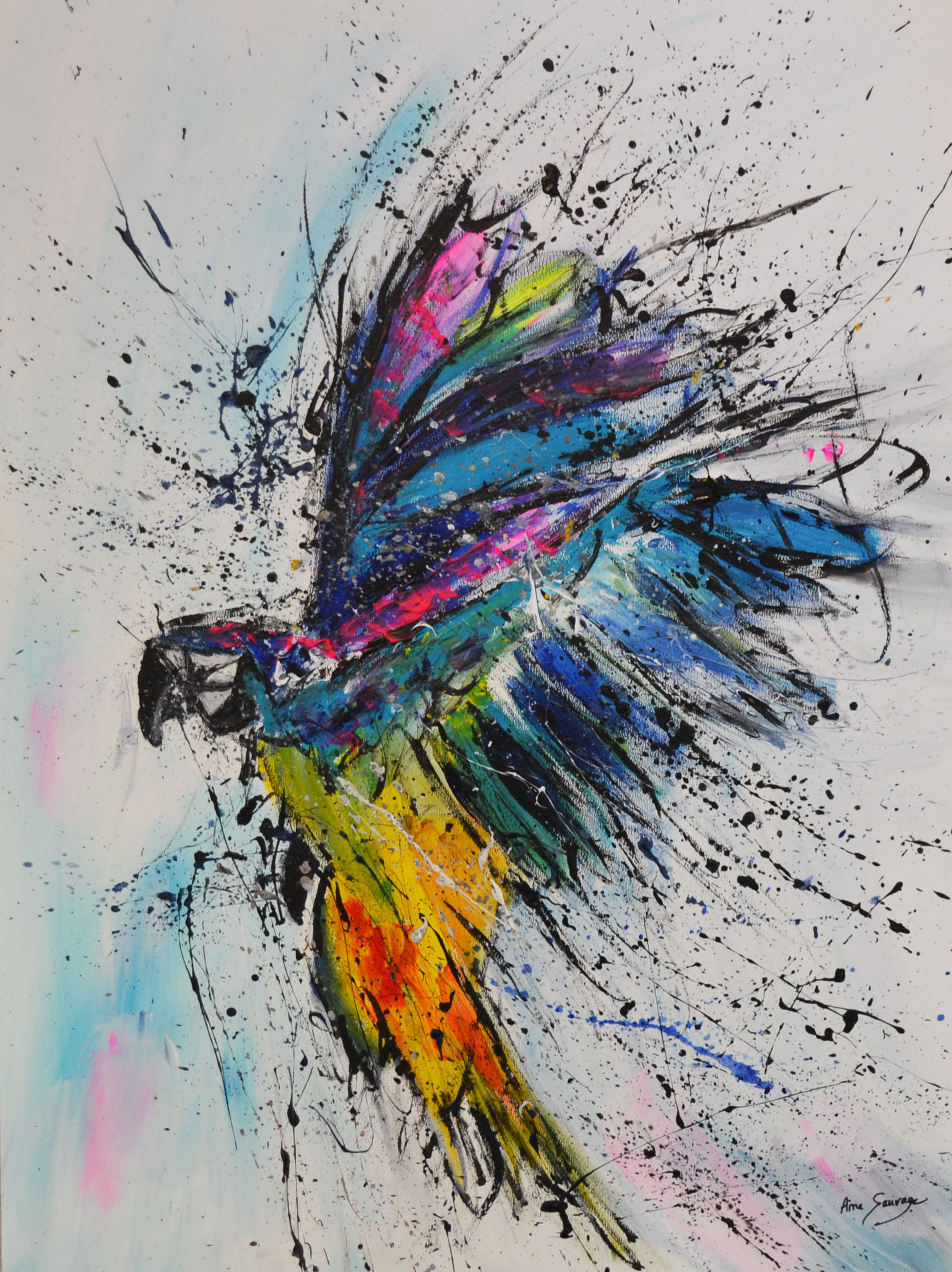tableau perroquet coloré